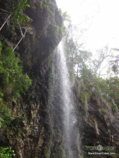 spring-brook-national-park-australia-27