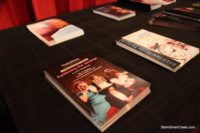 Auctioning-TheatreWorks-4