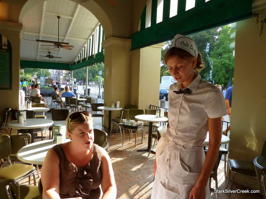 The French Quarter Beignet Experience Stark Insider