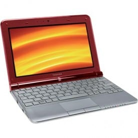 Toshiba NB305 netbook. Packs a punch for only $379 at Costco.