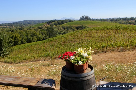 Sweeping views of the Russian River Valley