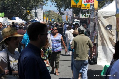 San-Jose-Jazz-Festival-18