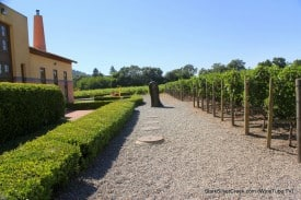 Thumb at Clos Pegase: A popular spot to get married.