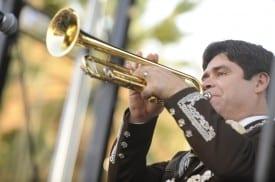 one trumpet
