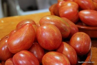 Taste Tomato at Macy's