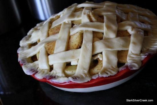 """Easy as Pie"" Apple Pie"