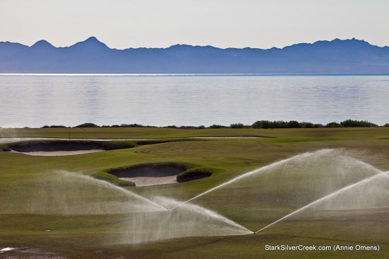 Golf on the Gulf