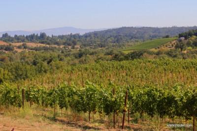 Iron-Horse-Vineyards-14