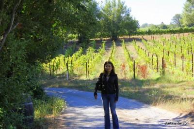 Iron-Horse-Vineyards-19