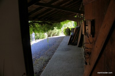 Iron-Horse-Vineyards-34