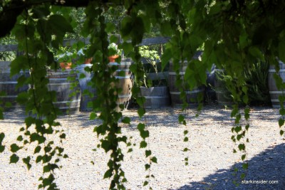 Iron-Horse-Vineyards-8