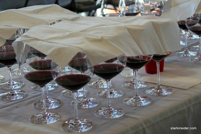 A flight of Pinots await