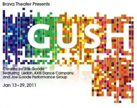 Gush Brava Theatre San Francisco
