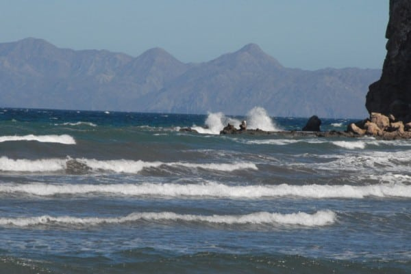 Sea of Cortez - Baja