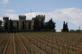 A vineyard in Châteauneuf-du-Pape, in southern Rhône.