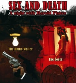 "Sex and Death - Harold Pinter ""The Dumb Waiter"" and ""The Lover"""