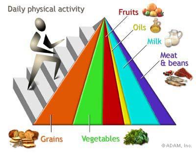 Food Pyramid circa 2005.