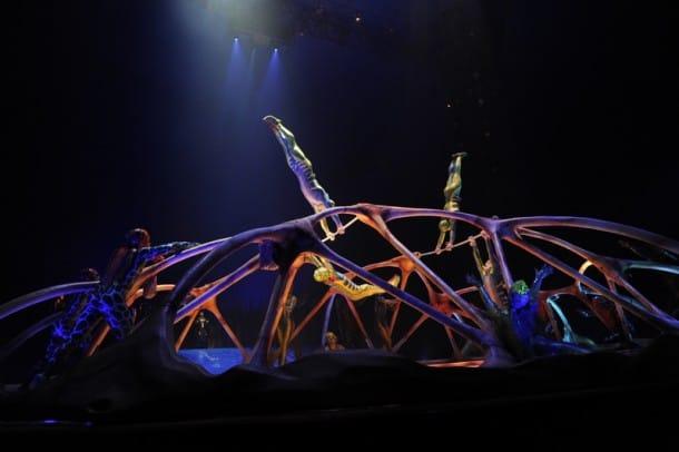 Cirque du Soleil Totem - Bars (Carapace)