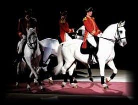 "The ""World Famous"" Lipizzaner Stallions"