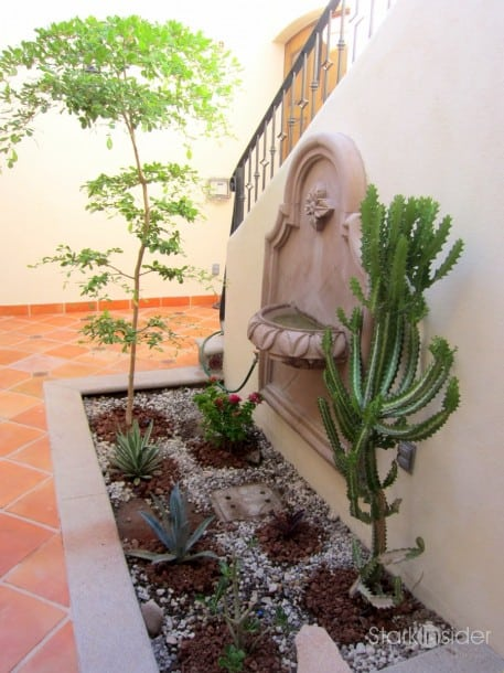 Ideas for a desert courtyard garden Stark Insider