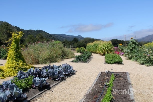 Carmel Valley Ranch - Organic Vegetable Garden