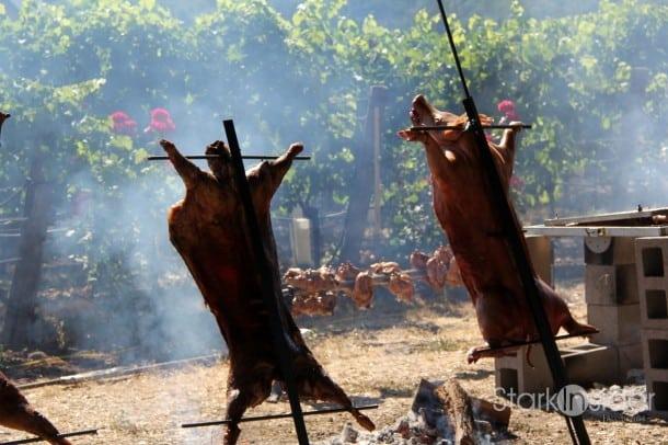 Cochon-Heritage-Fire-Napa-Stark-Insider-12