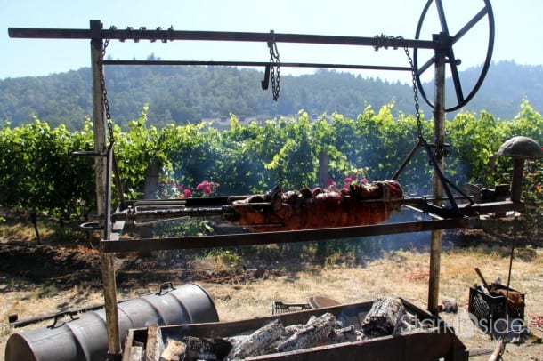 Pig on a rotisserie.