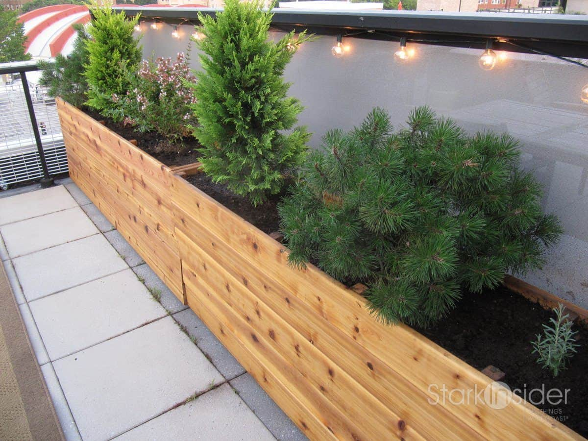 Charmant Urban Planter Box Design