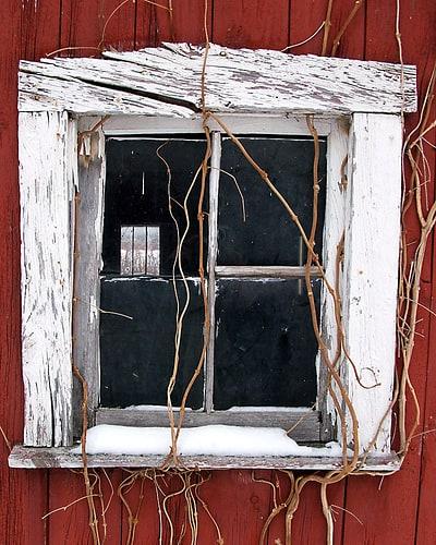 Drinking Window