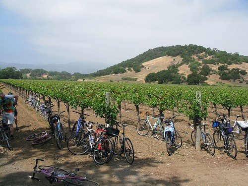 Bike Tour Napa