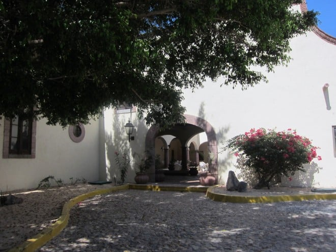 Hoya 19 Restaurant Review - Loreto Bay, BCS, Mexico