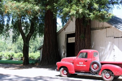 MacMurray-Ranch-Winery-Sonoma-Wine-Country-13