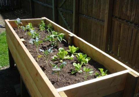 DIY Project: Vegetable Planter Box (plans, photos) | Stark ...