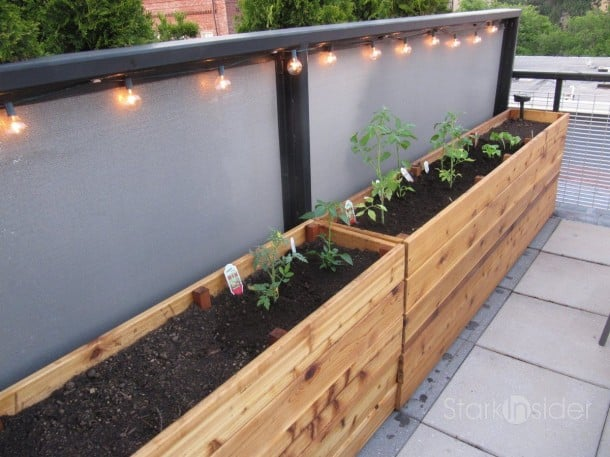Diy project vegetable planter box plans photos stark for Vegetable garden planter box designs