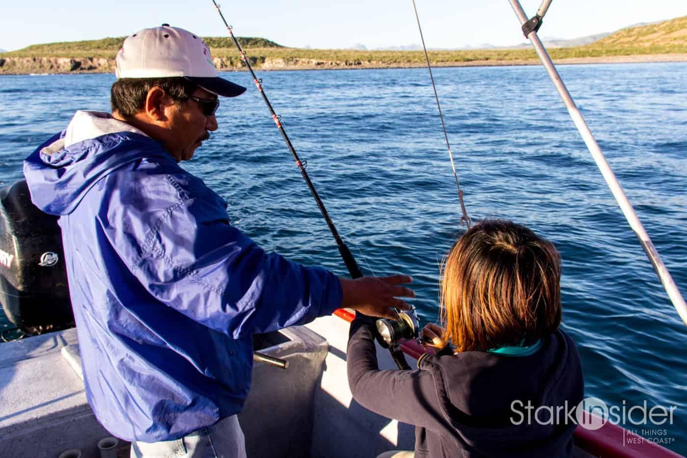 Fishing the islands of loreto baja stark insider for Baja california fishing