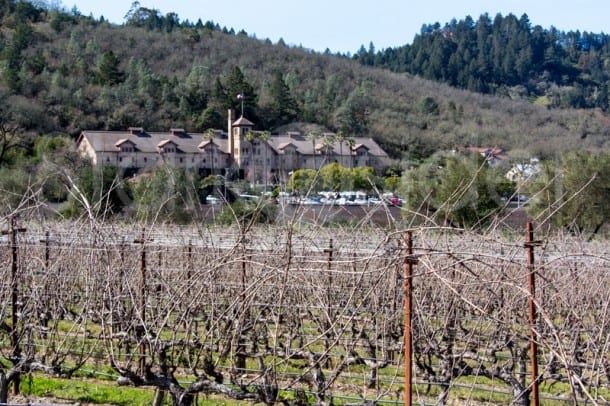 Culinary Institute of America at Greystone: Sight of the Premiere Napa Valley wine futures auction.