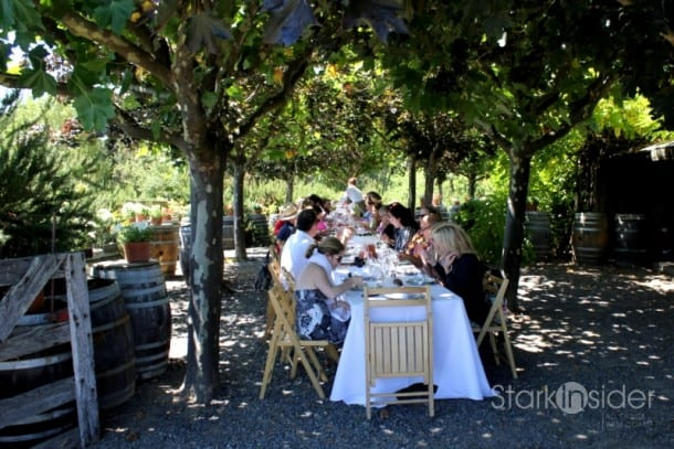 Having lunch or dinner in a vineyard is a must at least once in your lifetime.