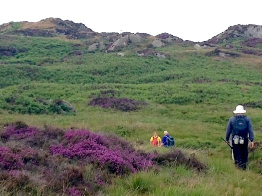 Looking for Heathcliff in the heather-clad moors
