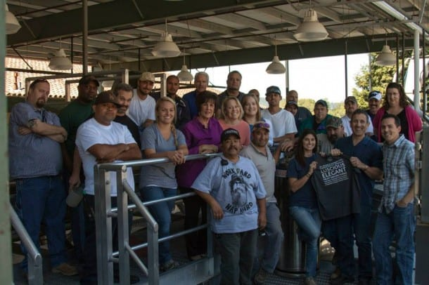 The team at St. Francis winery in Sonoma welcomes 13 tons of hand-picked Sauvignon Blanc grapes from Alexander Valley