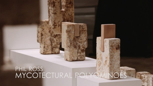 Phil Ross - Mycotectural Polyominoes