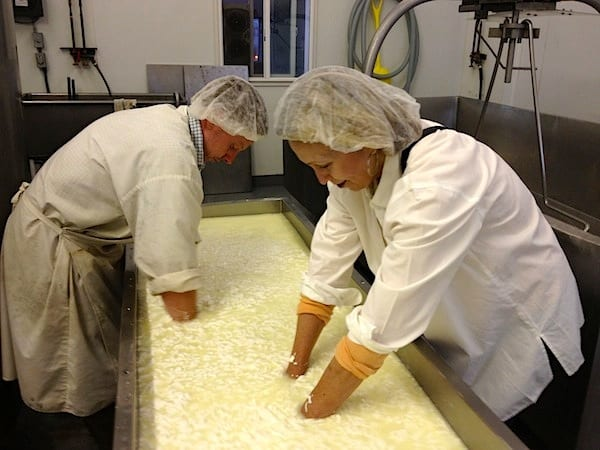 Joan and Nate making feta at Amaltheia Dairy