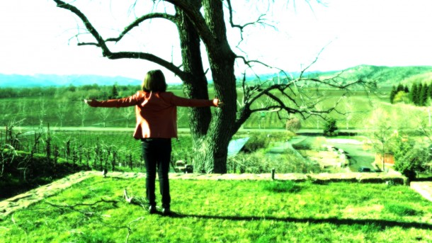 Loni Stark - Napa Valley