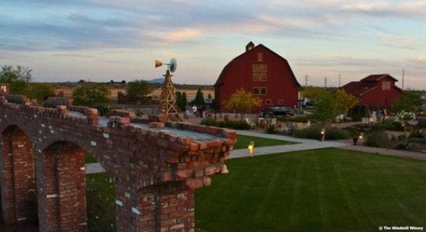 Windmill Winery wonderland