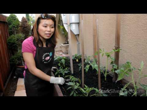 Video thumbnail for youtube video DIY: How to make your own vegetable planter box (Plans) | Stark Insider