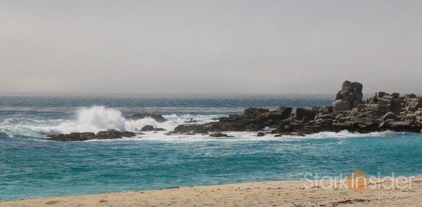 Plein Air in Monterey