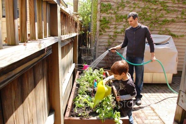 Garden-Box-Plans-California-stark-insider
