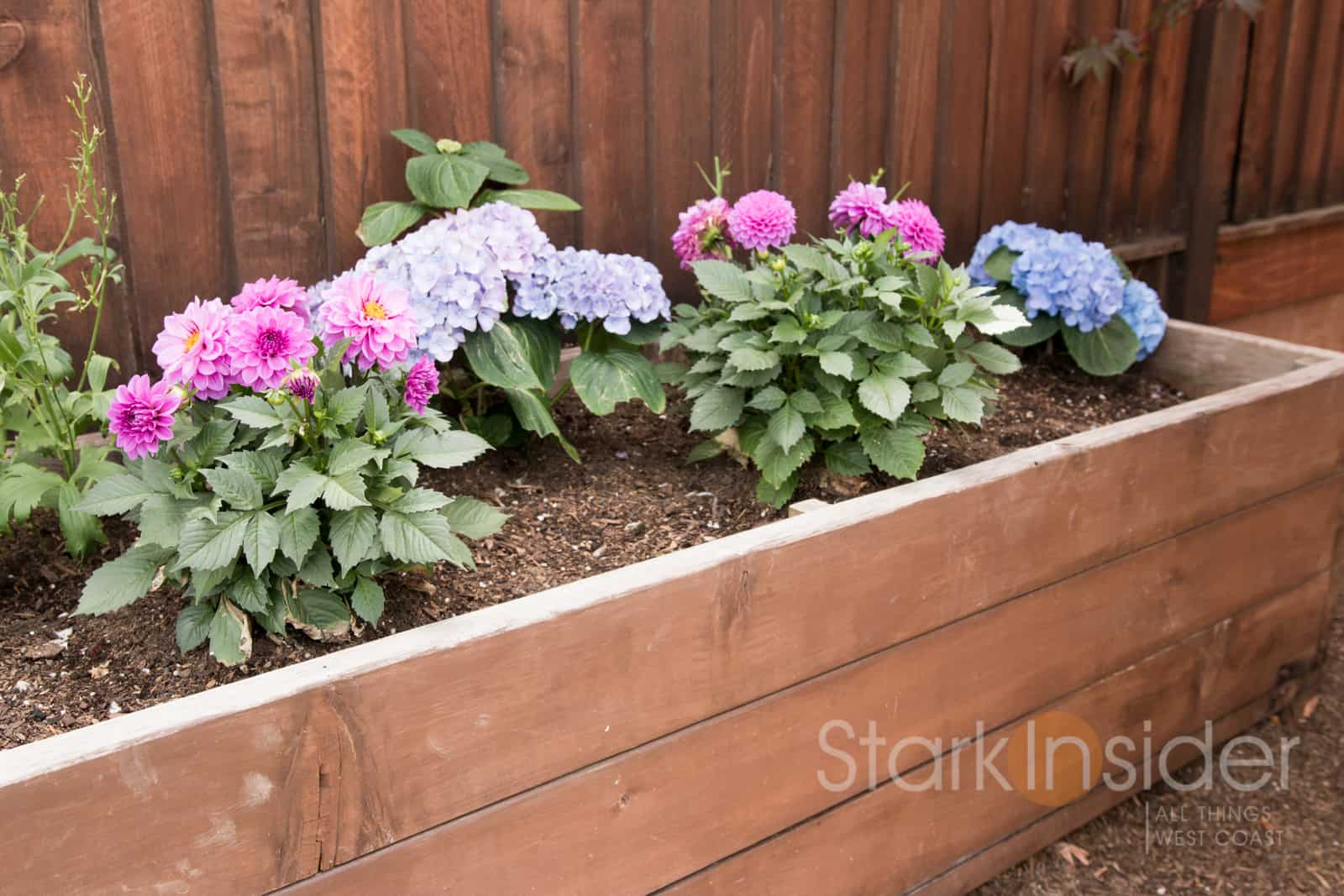 California diy garden box plans photos stark insider for Planter box garden designs