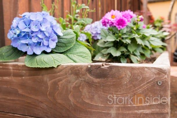 Garden-Box-Plans-Loni-California-2124
