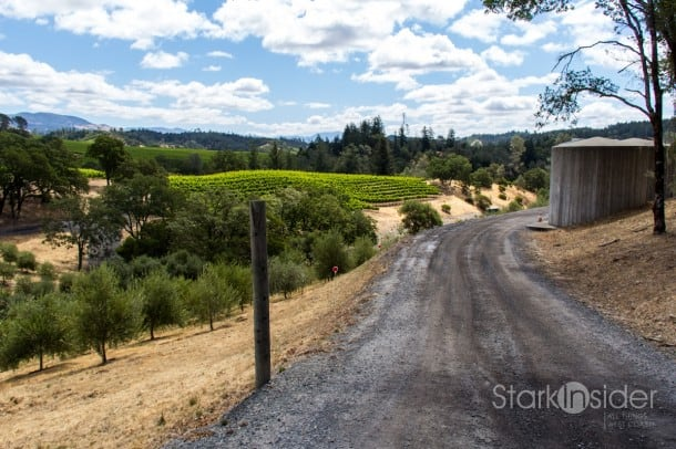 Dry Creek Valley in Sonoma is just one of several quick getaways just minutes from San Francisco.