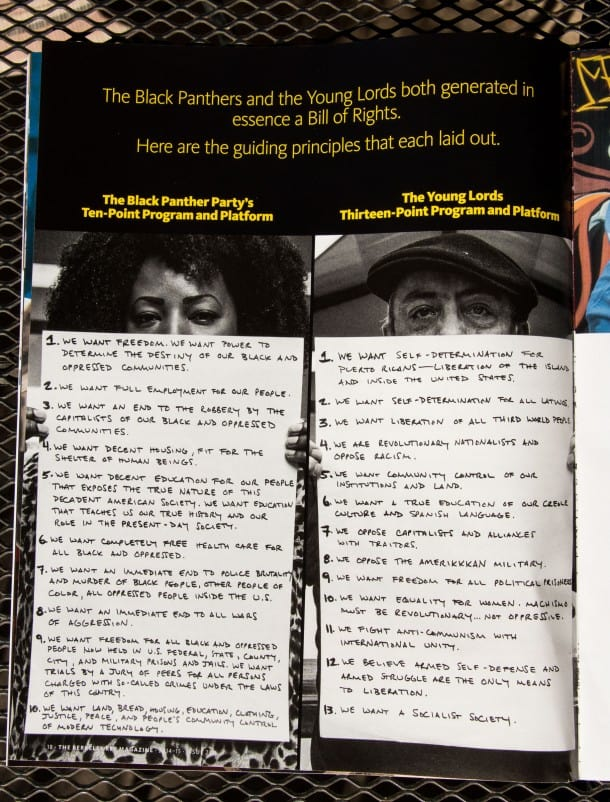 Bill of Rights: The Black Panthers and the Young Lords.